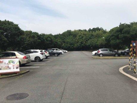 朝の第一駐車場の様子