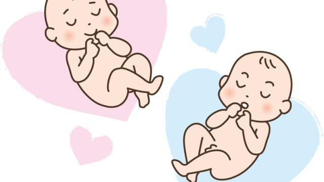 産み分けゼリーと赤ちゃん